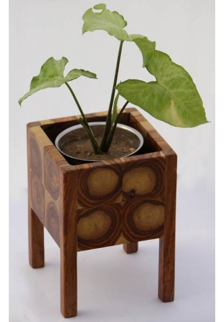 Four Pillars - End grain elevated planter